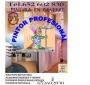 pintor profesional economico