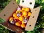 naranjas naturales valencianas
