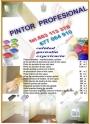 pintor profesional ,tel.603113370