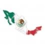 Apostilla / Apostille de Partidas de Nacimiento en Mexico